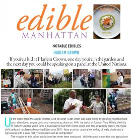 Edible Manhattan