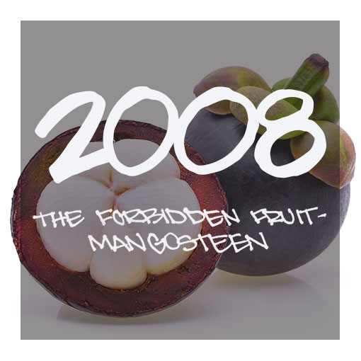 Half a mangosteen in front of a whole mangosteen.